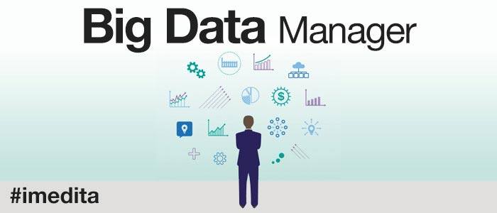 Big-Data-Manager