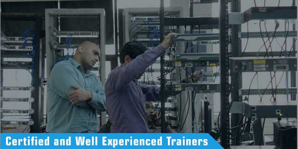 certified ccie trainers